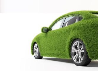 Eco transport - grass covered car.