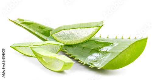 Foto op Canvas Cactus cut aloe leaves on white background