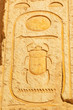 Scarab hieroglyph in the Temple of Queen Hatshepsut in Egypt