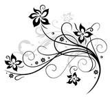 Blume, Blüte, Ranke, schwarz, grau
