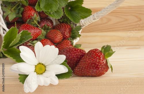 Strawberries, summer, flower, basket.