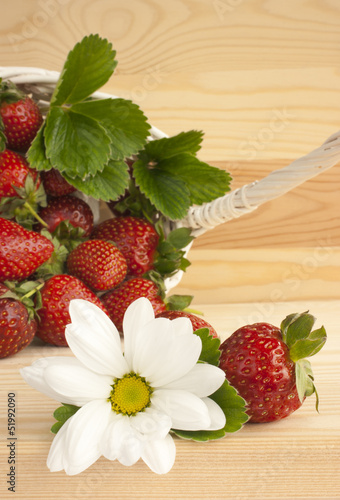 Strawberries, summer, flower, basket.