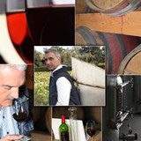 wine industry process