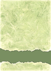 Watercolors background  in green olive colors