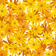 Seamless background with orange and yellow flowers. Vector.