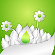 vector illustration of floral with leaf