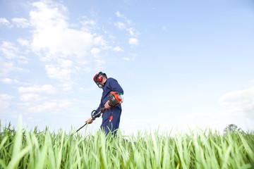 work in a field