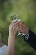 Couple toasting with champagne during celebration event