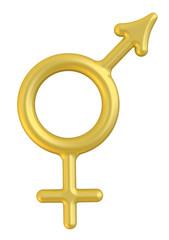 Совмещенные мужской и женский символ