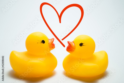 two ducklings with love symbol on isolated background