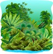 Jungle Tropical Rain Forest-Gi...