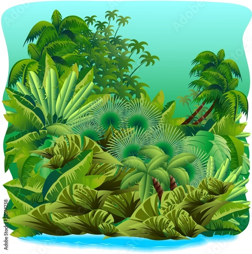 Jungle Tropical Rain Forest-Giungla-Foresta Tropicale-Vector