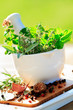 Fresh herbs in the mortar - healthy food