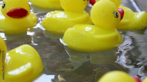 Rubber Duckies Floating in a Pool of Moving Water