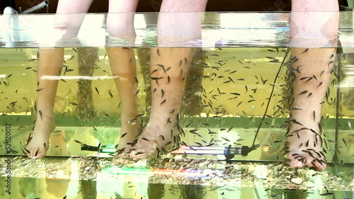 Peeling skin feet of tropical fish in the water