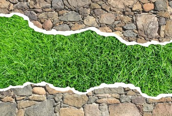 Rasen Steinwand