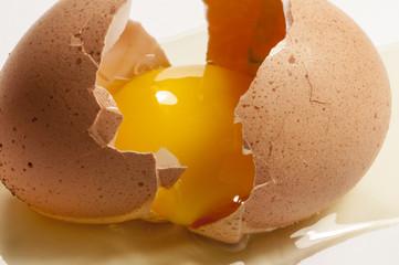 Ei geöffnet in Großaufnahme