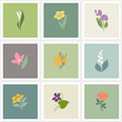 Flower. Vector logo templates set. Elements for design.