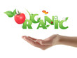 "Hand holding word ""Organic"" ecological design"