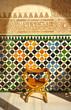 Alhambra palace, Granada - 52029898