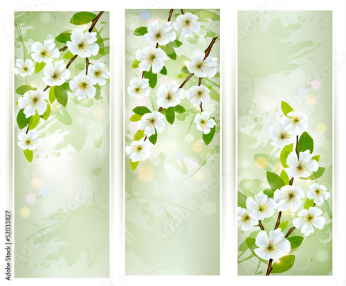 Three banners with blossoming tree branches. Vector illustration