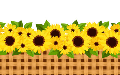 Horizontal seamless background with sunflowers and wicker.