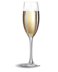 Champagne glass isolated