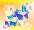 A wallpaper design with butterflies