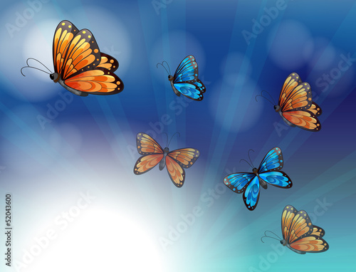 Poster Vlinders Colorful butterflies in a gradient colored stationery