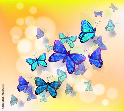 Poster Vlinders A wallpaper design with butterflies