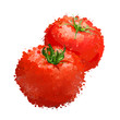 red tomatos vector illustration  of blots