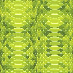 Snakeskin pattern green