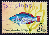 Postage stamp Philippines 1972 Parrotfish, Scarus Frenatus, Fish