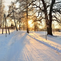 winter countyside view