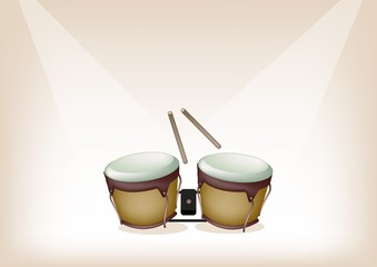 Beautiful Bongo on Brown Stage Background