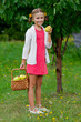 Fruit garden, orchard - lovely girl with ripe pears