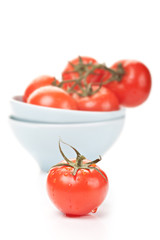 ripe tomatoes with water drops