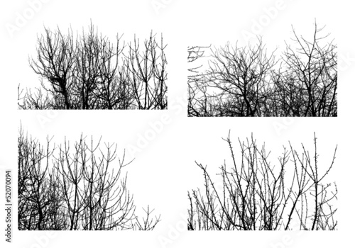 Black silhouettes of trees isolated on white. Set 2.