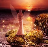 Fototapety Fantasy magic world. Pixie and sunset