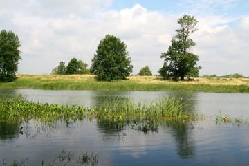 pond landscape, Qc, Canada