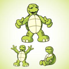 R&R Turtle