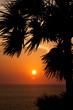Fototapeten,thai,hintergrund,strand,schön