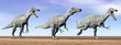 Suchomimus dinosaurs in the desert - 3D render