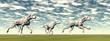 Dalmatian dogs running - 3D render