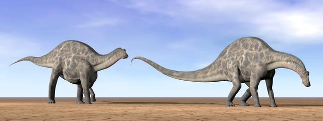 Dicraeosaurus dinosaurs in the desert - 3D render