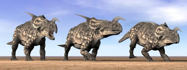 Einiosaurus dinosaurs in the desert - 3D render