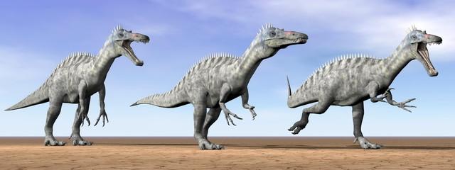 Suchomimus dinosaurs in the desert - 3D render