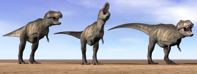 Tyrannosaurus dinosaurs in the desert - 3D render