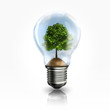 A light bulb with a tree inside