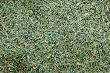 fried green tea